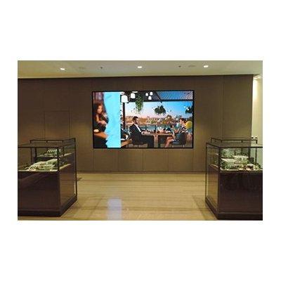 "165"" Full-HD LED Wall (1.9mm) incl. wandbeugel, afwerkingslijst en LED processor"